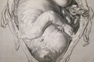 a-17th-century-engraving-of-a-baby-in-the-womb